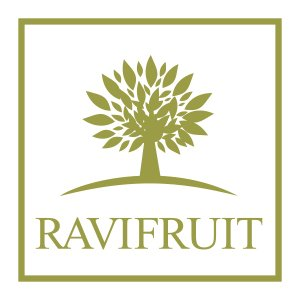 Ravifruit fruit puree supplier Maldives
